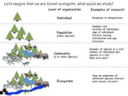 what do ecologists study science posse university of wyoming