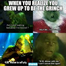 Grinch Meme - when you realize you grew up to be the grinch funnies