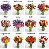 flower of the month club flower of the month club 12 months fresh cut