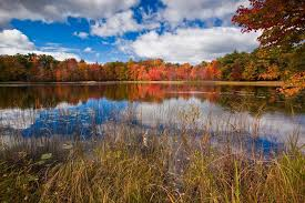 Michigan wildlife tours images From cider mills to fall color tours pure michigan has your guide jpg