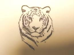 tiger tattoo designs pictures symbolism white tiger tattoo tatted up pinterest white tiger tattoo