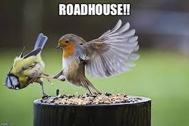 Roadhouse Meme - kicking sparrow imgflip