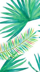 best 25 tree leaves ideas on pinterest plant identification