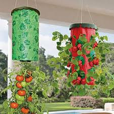 Giraffe Planter Compare Prices On Hanging Strawberry Plants Online Shopping Buy