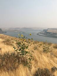 Eastern Washington Wildfire Update by Mike Matas On Twitter