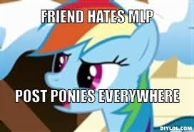 Mlp Rainbow Dash Meme - mlp rainbow dash meme google search my little pony brand