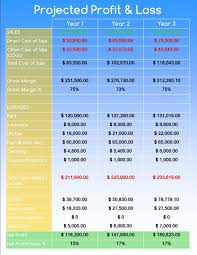 5 business plan financial projections template 6 cmerge