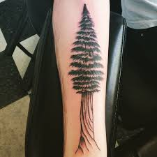 simple colored big forearm pine tree tattoo tattooimages biz