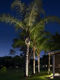 Landscape Lighting Jacksonville Fl Landscape Lighting In Jacksonville Florida