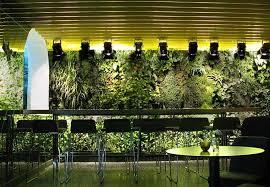 Indoor Vertical Gardens - best of indoor vertical garden design awesome