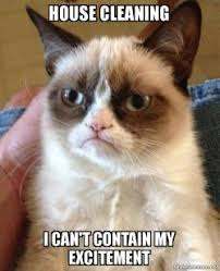 House Cleaning Memes - house cleaning i can t contain my excitement grumpy cat make a