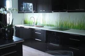 Kitchen Cabinets Contemporary Style Around The Kitchen In The Refrigerator Light Tags Glass