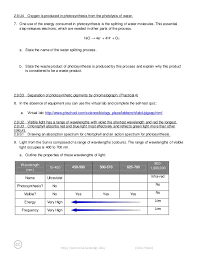 the absorption of light by photosynthetic pigments worksheet answers bioknowledgy dp notes 2 9 photosynthesis