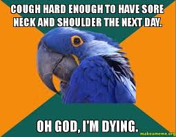 Paranoid Parrot Memes - cough hard enough to have sore neck and shoulder the next day oh