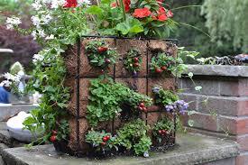 Garden Gate Garden Ideas Garden Container Ideas Search Planters Pinterest