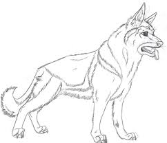 beautiful german shepherd coloring pages 50 in line drawings with