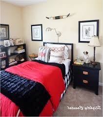 ideas for teenage girl bedroom teen bed room diy decor ideas girl rooms teenage girls bedrooms