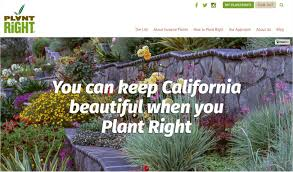 non native plants in california welcome to the new plantright website u2013 plantright