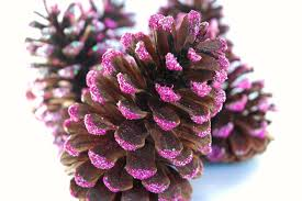 pink pinecone ornaments what can we do with paper and glue