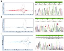 detection of egfr mutations in patients with non small cell lung