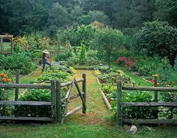 Beautiful Backyards Garden Design Garden Design With Beautiful Backyards Design