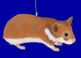 friendly hamster ornament or decor