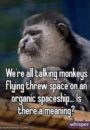 Flying Monkeys Meme - re all talking monkeys flying threw space on an organic spaceship
