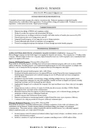 Benefits Administrator Resume Download Hr Director Vphr Chro Employee Relations In San Diego Ca