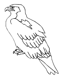 bird coloring pages perched falcon animal coloring pages