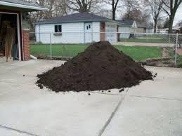 Backyard Soil Transforming My Backyard Into A Secret Garden Part 1 Hometalk