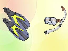 how to free dive wikihow