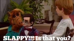 Alf Meme - slappy alf meme by nyumon202 on deviantart
