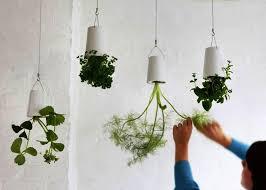 11 innovative u0026 fun indoor planter ideas garden lovers club