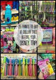 25 things to buy at dollar tree before your disney trip disney