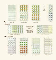 Vegetable Garden Plot Layout by Vegetable Garden Planner Decorfree Com