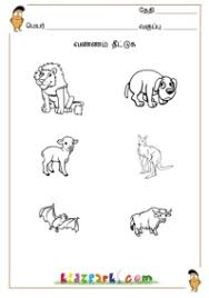 tamil shapes u0026 colors learn tamil color kindergarten printables