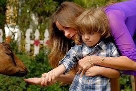 modern family season 8 episode 7 thanksgiving jamboree guide and