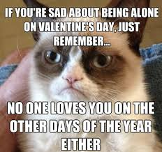 Anti Valentines Day Meme - haha mean and funny grumpy cat on valentines day makes me laugh