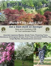 herbeins garden center pa lehigh valley nursery landscaping