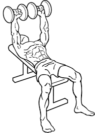 Dumbbell Exercises Chest No Bench - dumbbell workout for chest without bench home decorating