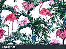 pink flamingos tropical flowers butterflies palm stock vector