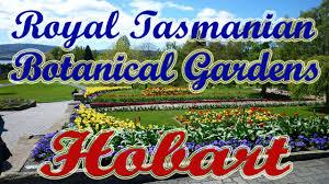Botanic Gardens Hobart Australia Travel Tour Best Time To Visit Places In Hobart