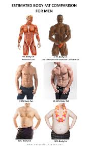body fat percentage comparisons for men u0026 women