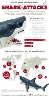 best 25 shark attacks ideas on pinterest shark bites sharks