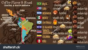 South America Map Games by Vector Infographic Concept Coffee Map Central Stock Vector