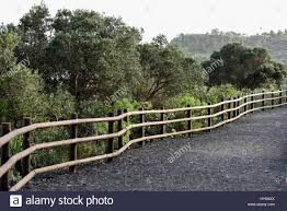 Curved Handrail Wooden Curved Handrail Fence In A Botanic Garden Protecting People