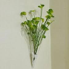 cone taper shape glass hanging plant terrarium flower vase pot