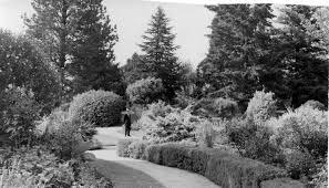 Kyneton Botanical Gardens History Friends Of Kyneton Botanic Gardens