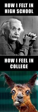 Hilarious College Memes - college memesltcl magazine