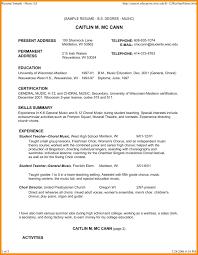 musical theatre resume exles 2 template musician cv template